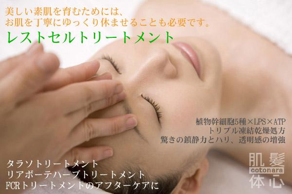 リアボーテレストセルトリートメント|【東京 世田谷区】「三軒茶屋 からだのことなら」は、肌・髪・体・心の悩みの改善に「丁寧に寄り添う」メディカル系ケア専門院です。肌質改善・加齢肌対策・薄毛・抜け毛をはじめ、体調不良・痛みなどでお悩みなら1度ご来院下さい。ヒト由来幹細胞と植物由来幹細胞のリアボーテクレアスキン・グランスキン化粧品正規販売代理店