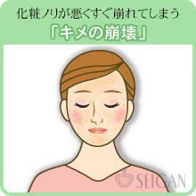 キメが荒い悩み|東京 三軒茶屋 からだのことなら|肌・頭皮(薄毛)の悩みの改善に「ヒト幹細胞と植物幹細胞による」メディカル系フェイシャルエステケア【FCR・リアボーテハーブ・ACトリートメント・クレアスキン基礎化粧品の正規取扱いサロン】