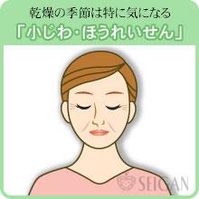小じわ・ほうれい線の悩み|東京 三軒茶屋 からだのことなら|肌・頭皮(薄毛)の悩みの改善に「ヒト幹細胞と植物幹細胞による」メディカル系フェイシャルエステケア【FCR・リアボーテハーブ・ACトリートメント・クレアスキン基礎化粧品の正規取扱いサロン】