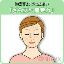 ざらつき・肌荒れの悩み|東京 三軒茶屋 からだのことなら|肌・頭皮(薄毛)の悩みの改善に「ヒト幹細胞と植物幹細胞による」メディカル系フェイシャルエステケア【FCR・リアボーテハーブ・ACトリートメント・クレアスキン基礎化粧品の正規取扱いサロン】