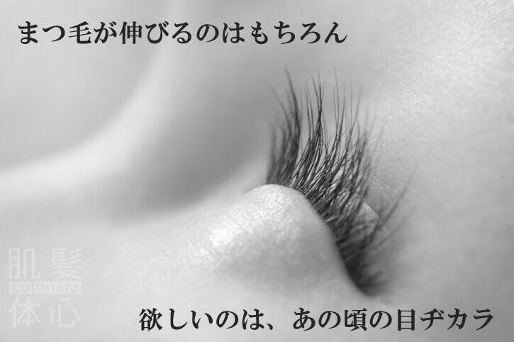 まつ毛専用美容液 リアムール エキスパートラッシュ のご購入はこちらから|東京・世田谷区 正規取扱い販売店 三軒茶屋 からだのことなら【美肌研究所 SEIGAN】|通販ネットショップ運営|口コミ・効果・公式の使い方など